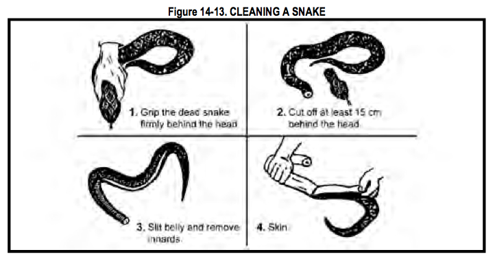 Cleaning a Snake